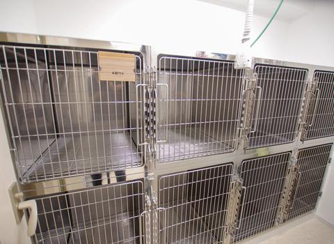 犬用入院室