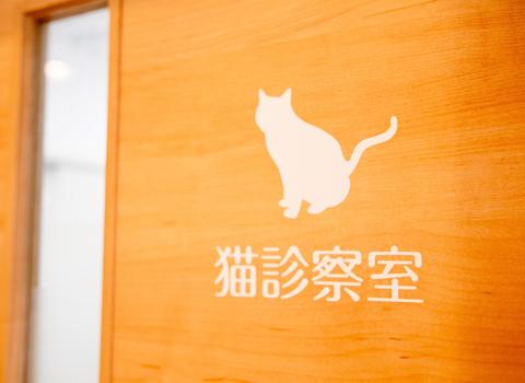 猫用診察室